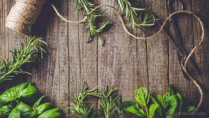 Herbs-Garden-Vegetables-5